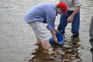 Student releases fry in river