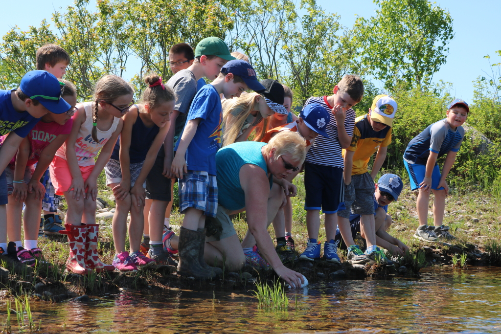 Students releasing fish for fish friends program in 2018