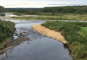 Burnt Land Brook 1